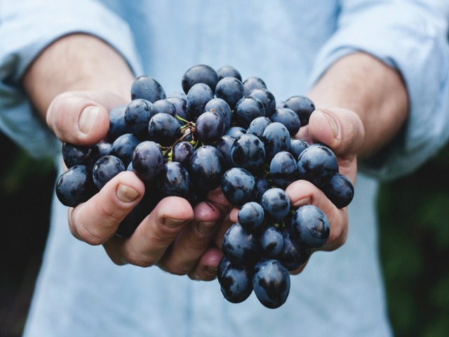 grozdje-640